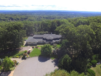 Montville Twp. Single Family Home For Sale: 4 Sky Ter