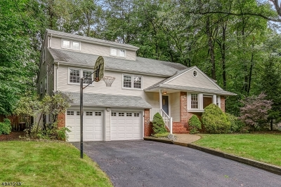 Morris Plains Boro Single Family Home For Sale: 4 Tower Hill Road