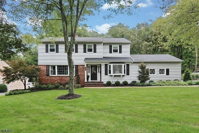 Berkeley Heights Twp. Single Family Home For Sale: 141 Lorraine Dr