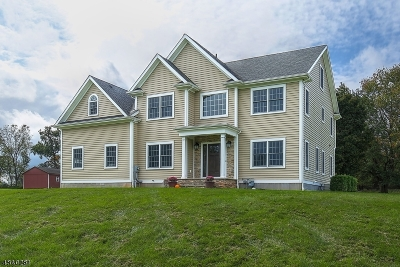 Readington Twp. Single Family Home For Sale: 5 Logan Way