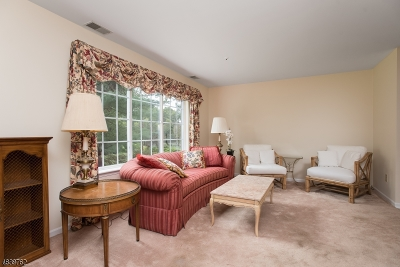 Morristown Town, Morris Twp. Condo/Townhouse For Sale: 13 Village Dr