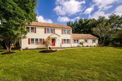 Montgomery Twp. Single Family Home For Sale: 107 Platz Dr