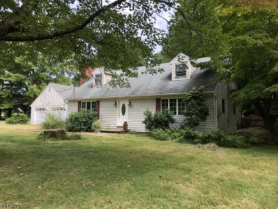 Single Family Home For Sale: 236 Old Turnpike Rd