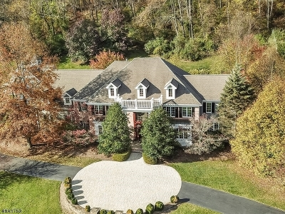 Chester Twp. NJ Single Family Home For Sale: $1,050,000
