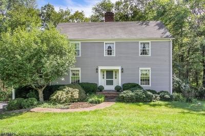 Bernards Twp. Single Family Home For Sale: 51 Chimney Ash Farm Rd