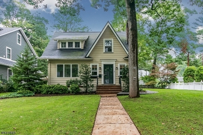 Westfield Town Single Family Home For Sale: 775 Boulevard