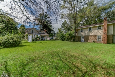Chatham Twp Single Family Home For Sale: 462 Green Village Rd