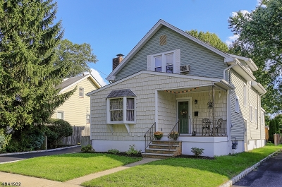 Piscataway Twp. Single Family Home For Sale: 13 Buchman St