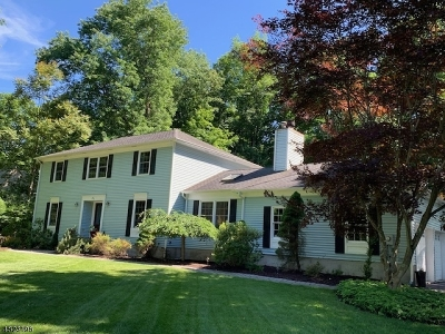 Mount Olive Twp. Single Family Home For Sale: 21 Powhatatan Way