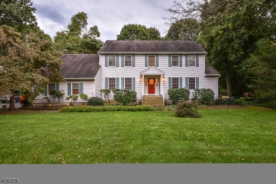 Montville Twp. Single Family Home For Sale: 41 Old Ln