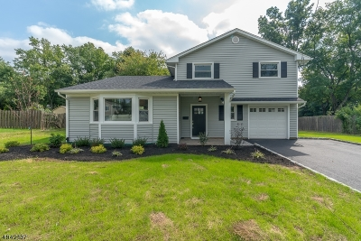 Westfield Town Single Family Home For Sale: 101 Summit Ct