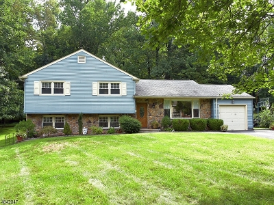 Berkeley Heights Single Family Home For Sale: 188 Sutton Dr