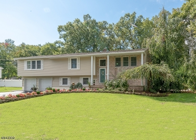 East Hanover Twp. Single Family Home For Sale: 41 Cutter Dr