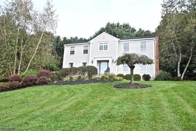 Clinton Town, Clinton Twp. Single Family Home For Sale: 28 Studer Rd