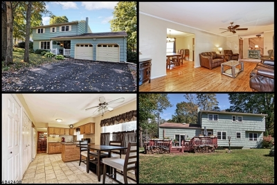 Mount Olive Twp. Single Family Home For Sale: 1 Pershing Ave