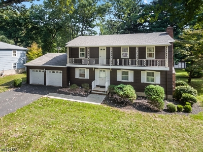 Parsippany-Troy Hills Twp. Single Family Home For Sale: 3 Inwood Rd