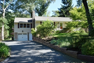 Morris Plains Boro Single Family Home For Sale: 48 Old Wood Rd