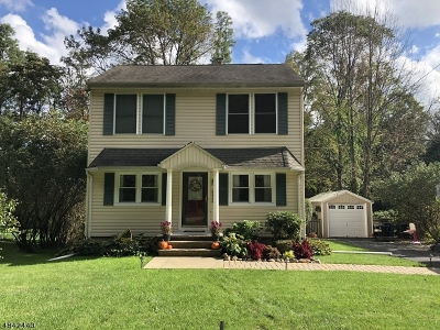 Roxbury Twp. Single Family Home For Sale: 26 Mt Arlington Rd