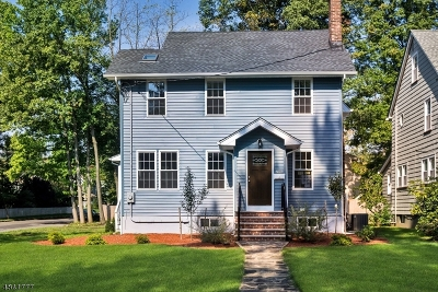Westfield Town Single Family Home For Sale: 703 St Marks Ave