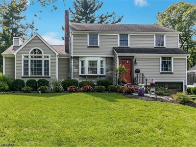 Chatham Boro Single Family Home For Sale: 13 Burgess St
