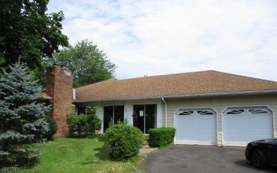 Holland Twp. Single Family Home For Sale: 16 Lanning Ln