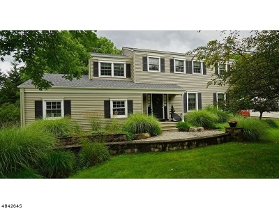 Mendham Boro Single Family Home For Sale: 6 Florie Farm Rd
