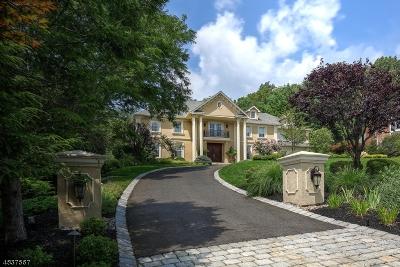 Warren Twp. Single Family Home For Sale: 17 Springdale Ln