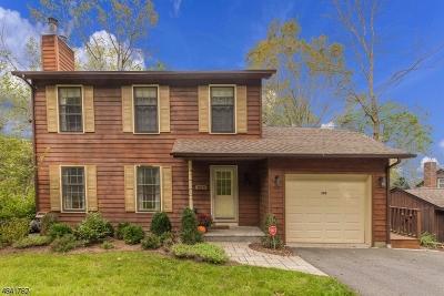 Glen Gardner Boro, Hampton Boro, Lebanon Twp. Single Family Home For Sale: 303 Dogwood Dr