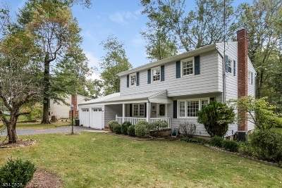 Berkeley Heights Single Family Home For Sale: 165 Lawrence Dr