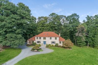 Bernardsville Boro Single Family Home For Sale: 67-2 Ballantine Rd