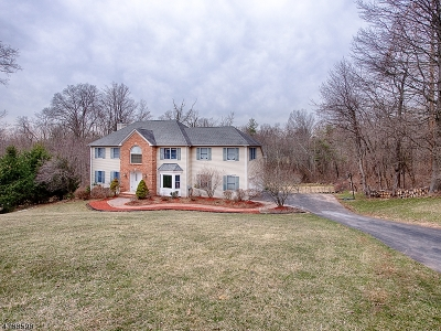 Clinton Twp. Single Family Home For Sale: 5 Sky View Garden Rd