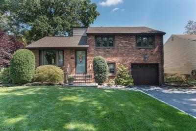Scotch Plains Twp. Single Family Home For Sale: 219 Elm Ct