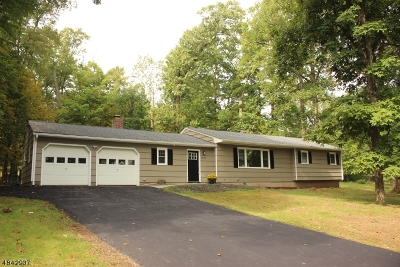 Bridgewater Twp. Single Family Home For Sale: 1073 Rector Rd
