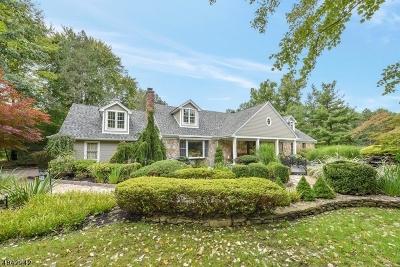 Wayne Twp. Single Family Home For Sale: 1065 Pines Lake Dr