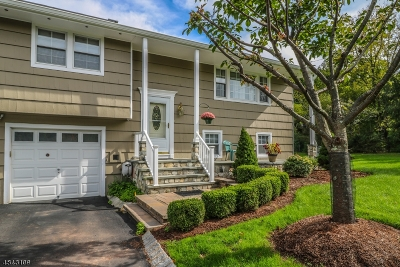 Branchburg Twp. Single Family Home For Sale: 80 Vollers Dr