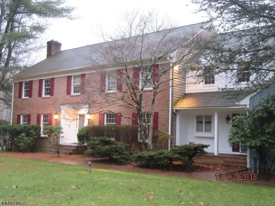Mendham Boro Single Family Home For Sale: 95 Bliss Rd