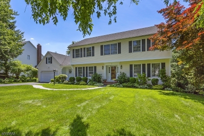 Mendham Twp. NJ Single Family Home For Sale: $750,000