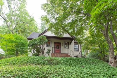 Morris Twp. Single Family Home For Sale: 24 Midland Dr