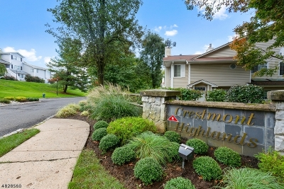 Bedminster Twp. Condo/Townhouse For Sale: 74 Academy Ct
