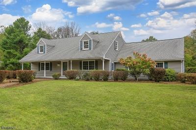 Bernards Twp. Single Family Home For Sale: 393 Mountain Rd