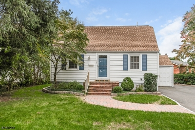 Springfield Single Family Home For Sale: 162 Milltown Rd