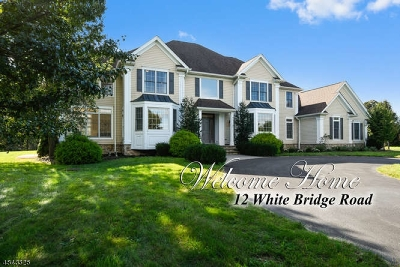 Franklin Twp. Single Family Home For Sale: 12 White Bridge Rd