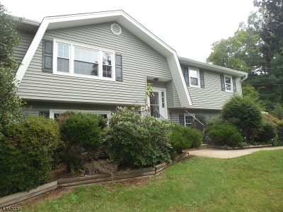 Bridgewater Twp. Single Family Home For Sale: 100 Prospect Ave