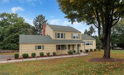 Mendham Boro Single Family Home For Sale: 34 Deerfield Rd