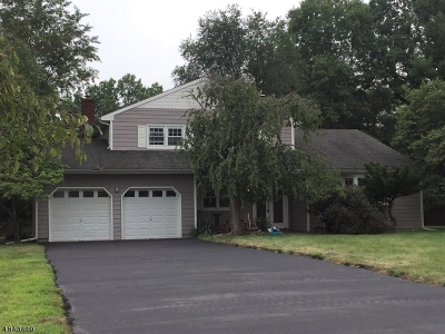 Hillsborough Twp. Single Family Home For Sale: 12 Woodmere Dr