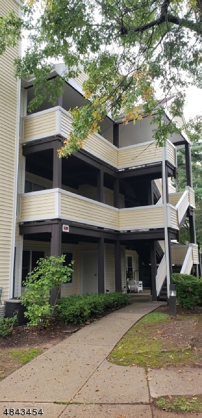 Union Twp. Condo/Townhouse For Sale: 531 Clubhouse-9