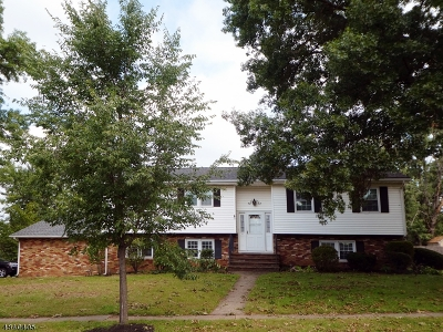 Somerville Boro Single Family Home For Sale: 53 Steele Ave