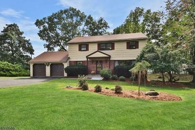 Hawthorne Boro NJ Single Family Home For Sale: $549,900