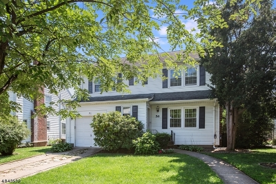 Bloomfield Twp. Single Family Home For Sale: 56 Haines Dr