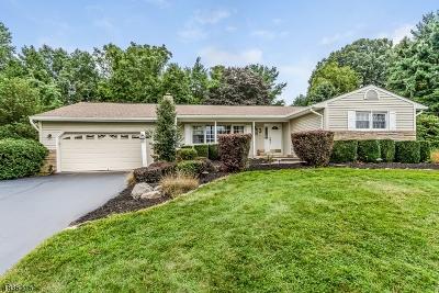 Raritan Twp. Single Family Home For Sale: 3 Chapel View Drive